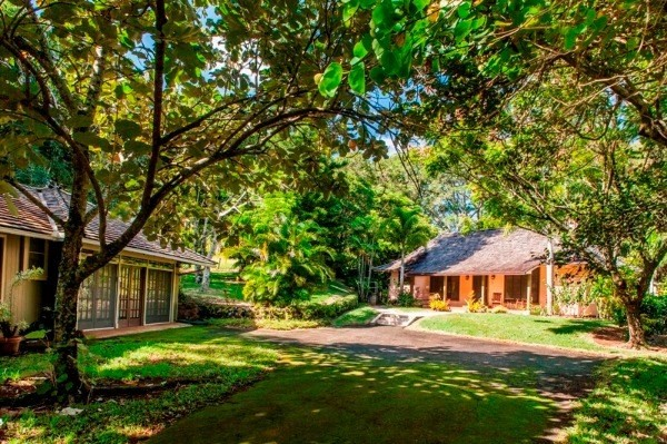 Hawaii luxury real estate auctions great deal or no deal for Kauai life real estate