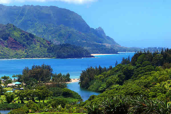 Getting north shore kauai property eligible for ag for Kauai life real estate