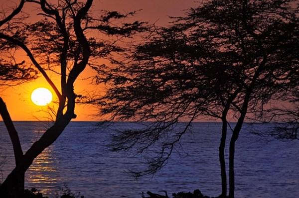 For Sale Fairway Terrace Big Island Hawaii