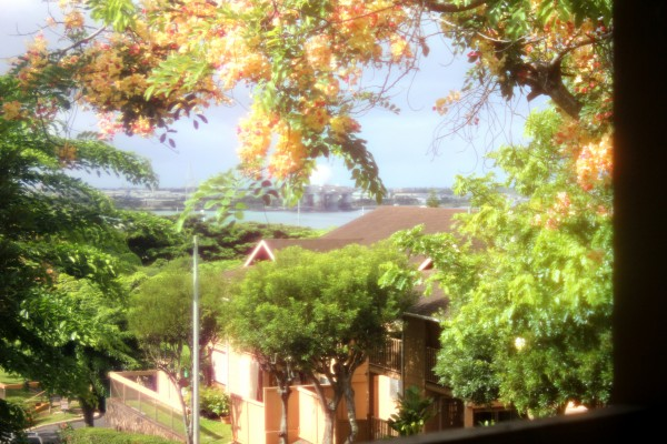 Pearl Harbor view from your lanai!