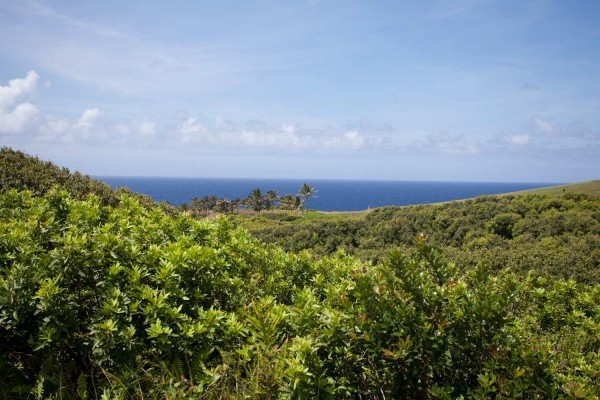 7 Acre Oceanview Site