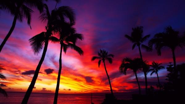 hawaiisunset2