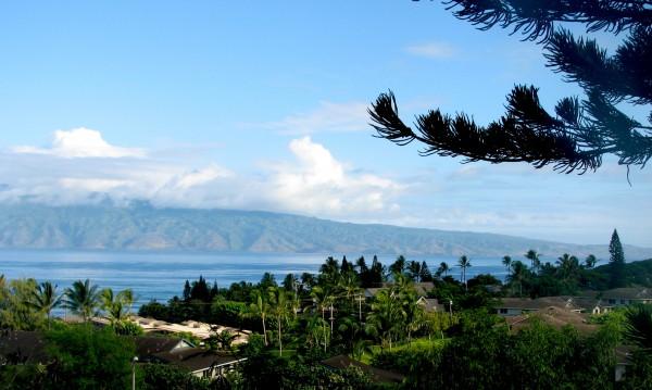 Napili Villas viewed from the Maui Prep playground!