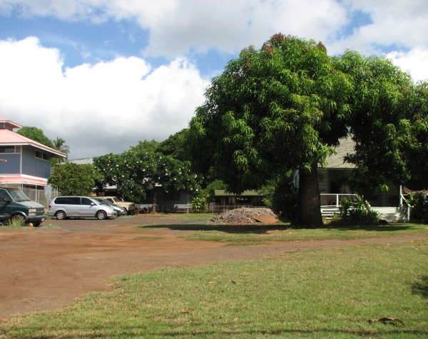 Waianae Place back yard